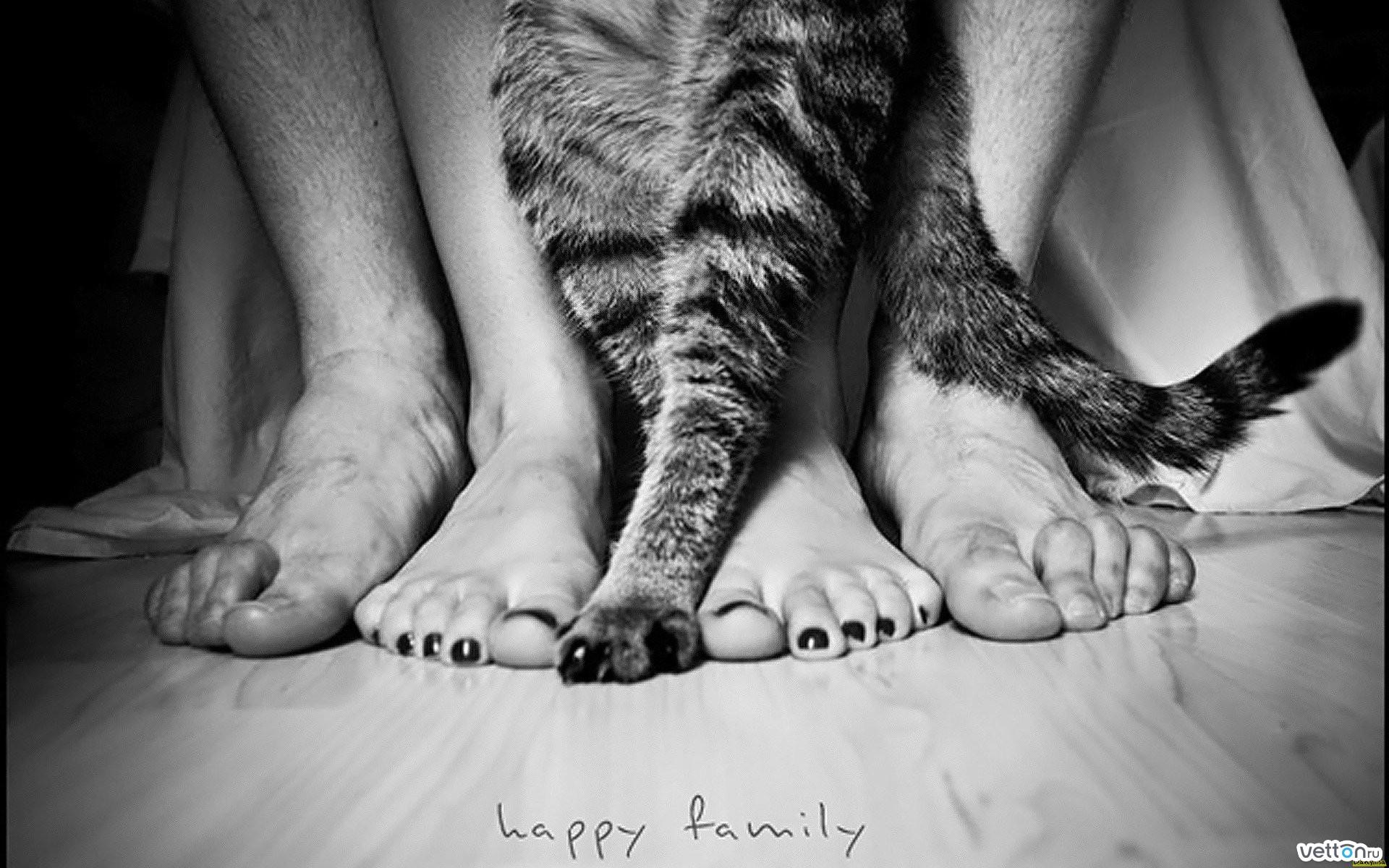 Фото семейная чета в постели 24 фотография