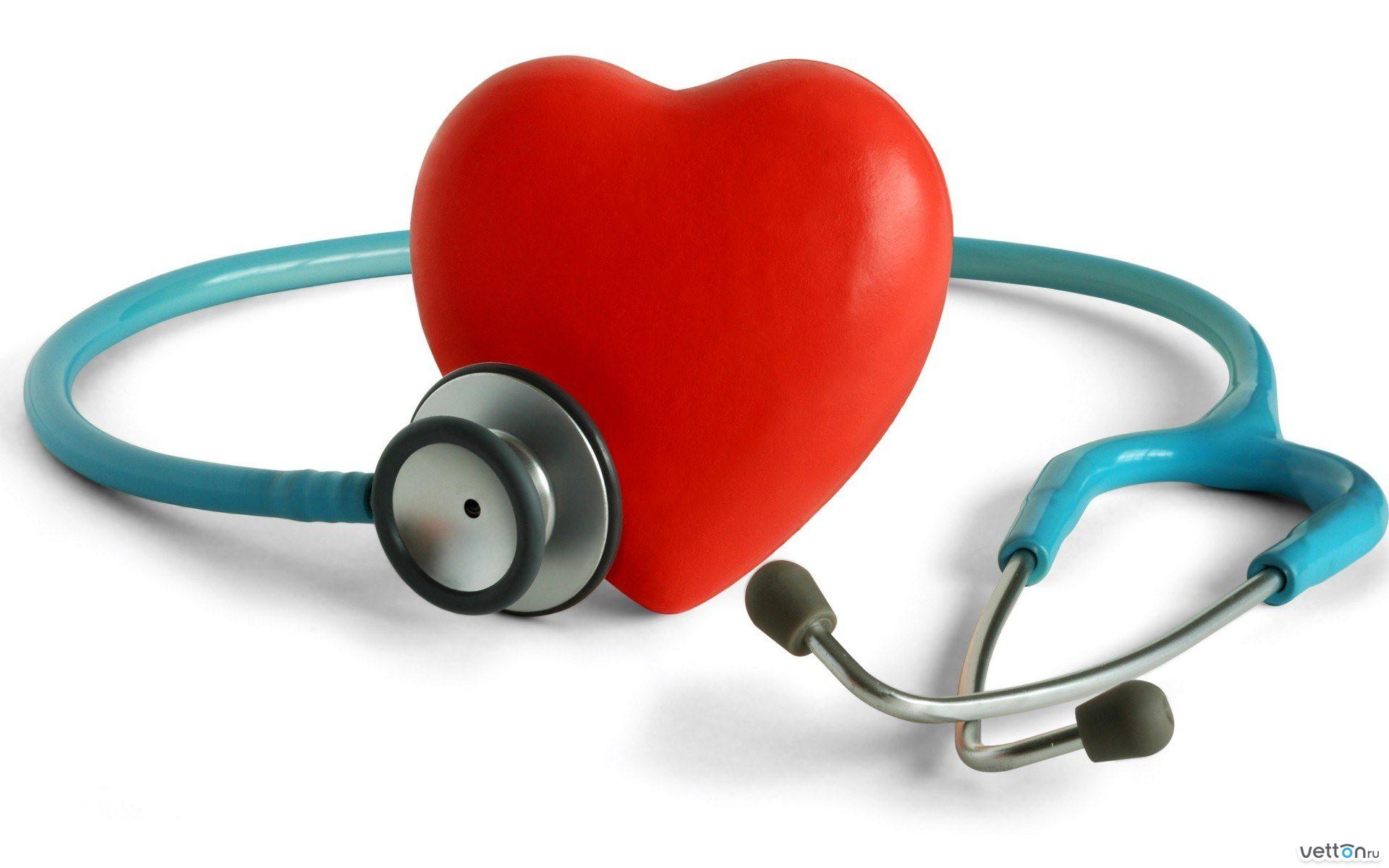 Добровольное медицинское страхование курсовая 28 фотография