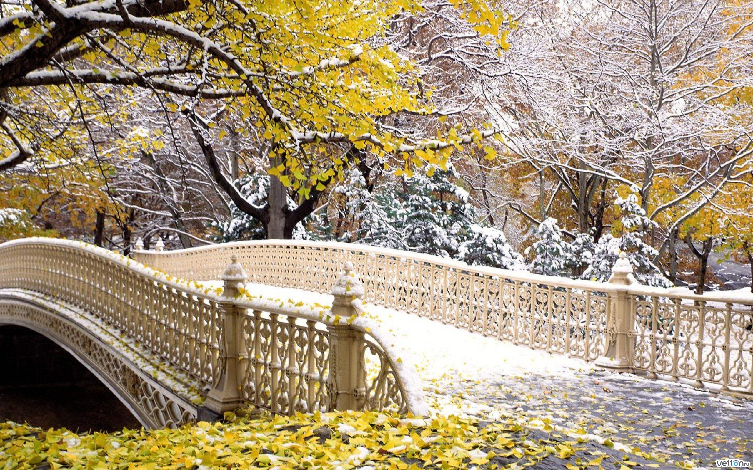спросом этом погода катании в ноябре прогноз